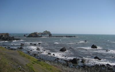 California's Ocean Protection Network in Full Effect!